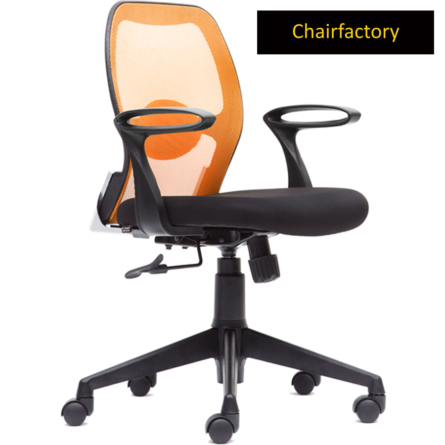 Catrix ZX Low Back Ergonomic Office Chair