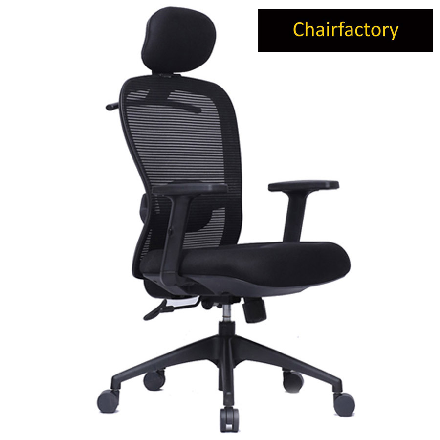 Esta ZX High Back Ergonomic Office Chair