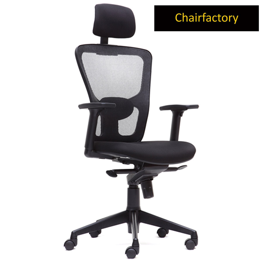 Swiss ZX High Back Ergonomic Office Chair