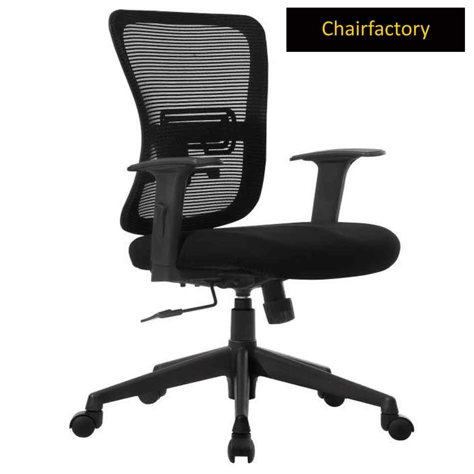 Orry LX Mid Back Ergonomic Office Chair