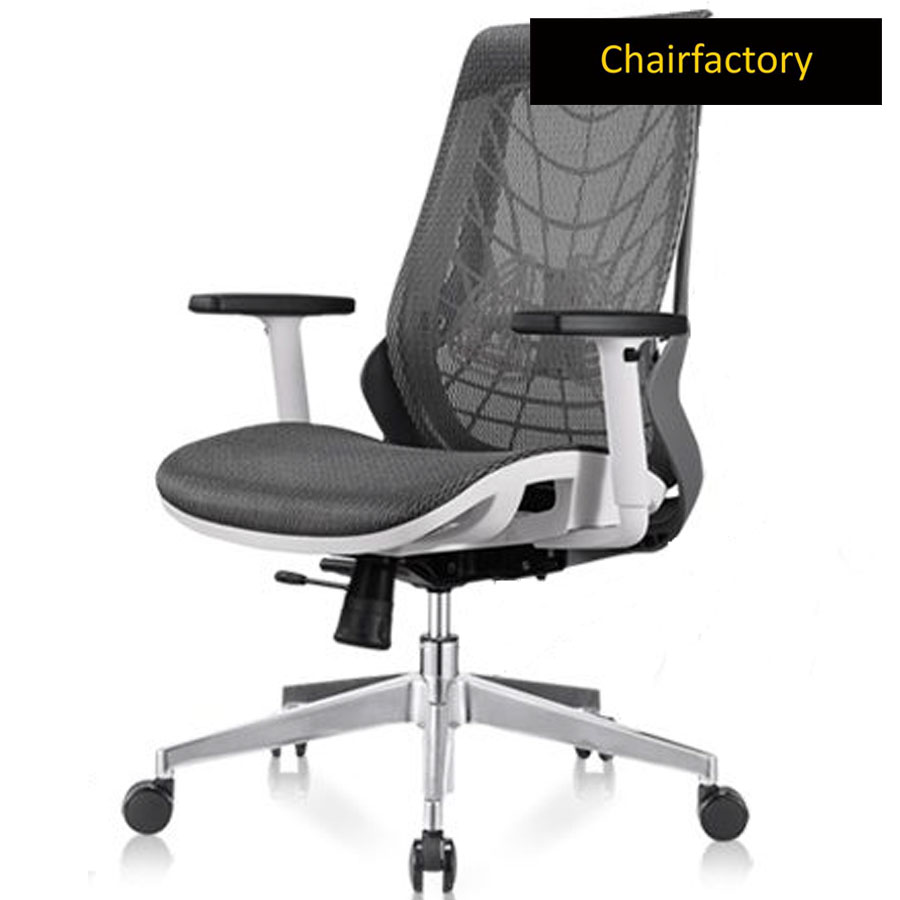 Sicarius Mid Back Ergonomic Office Chair
